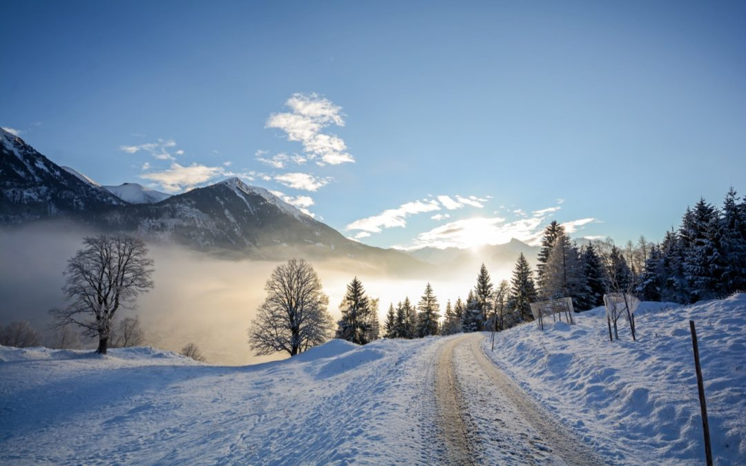 Zu Fuss von Zürich nach Savognin – ein Rückblick